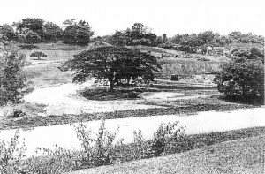 The site of Parliament House in Lake Gardens before construction began in 1962.