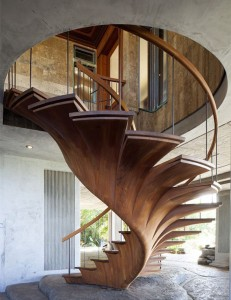 The Tree Staircase
