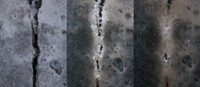 Self-healing concrete no longer science fiction